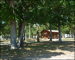 Lake Livingston Campground